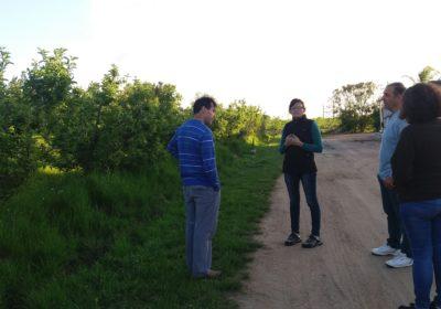 Estrategias para el correcto uso de agroquímicos en productores de AFRUPI