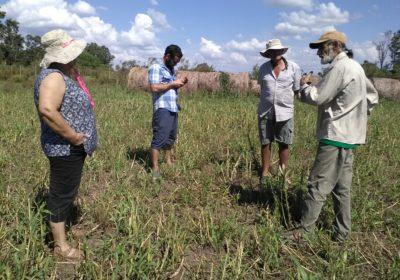 Implementación de experiencias agroecológicas en la Cuenca del Río Santa Lucía