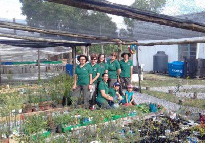 Proyectos programa de peque as donaciones for Viveros en maldonado